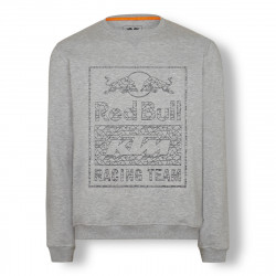"SWEAT RED BULL HOMME ""TEAM..."